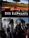 La Nuit des éléphants - DVD