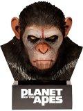 La Planète des Singes : Intégrale Collector Blu Ray