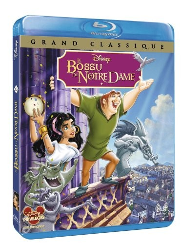 [MULTI] Le Bossu de Notre-Dame (1996) [FRENCH] [Bluray 720p]