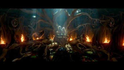 Le royaume de Ga Hoole – La légende des gardiens