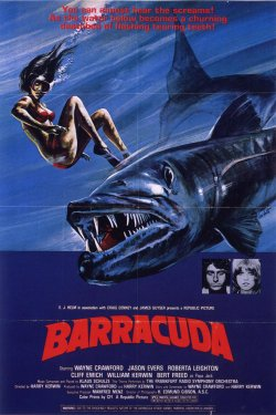 [multi] Barracuda [DVDRIP]