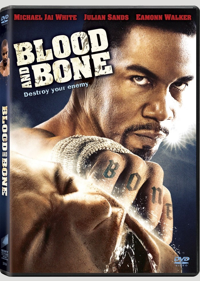 Blood and bone [DVDRiP] [FRENCH] [MULTI]