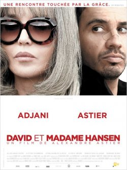 David et Madame Hansen (2012) [FRENCH] [Blu-Ray 720p / 1080p]