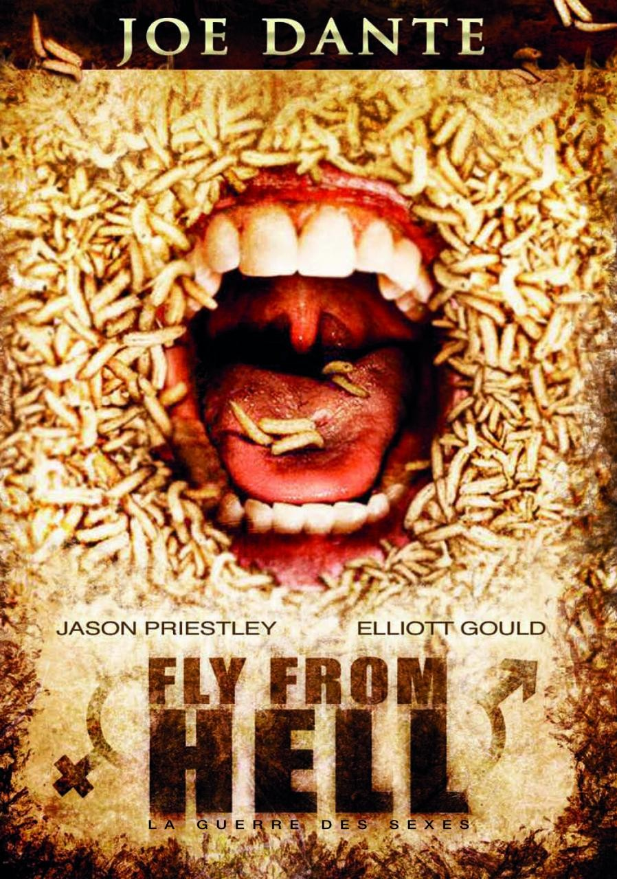 [DF] Fly From Hell [TRUEFRENCH][DVDRiP]