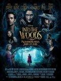 Into the Woods : Promenons Nous dans les bois