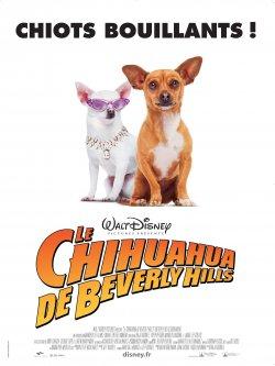 Le Chihuahua de Beverly Hills