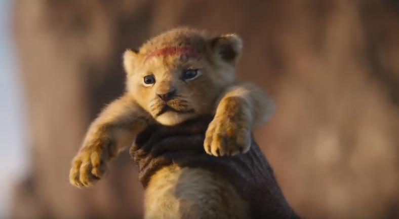 Le roi lion de nouvelles images pour le film disney tv - Le roi lion les hyenes ...