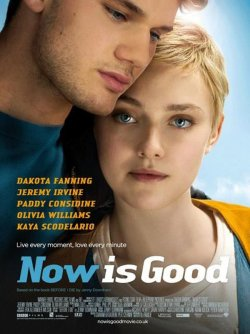 Now Is Good (2012) [MultiLangues] [DVD-R NTSC]