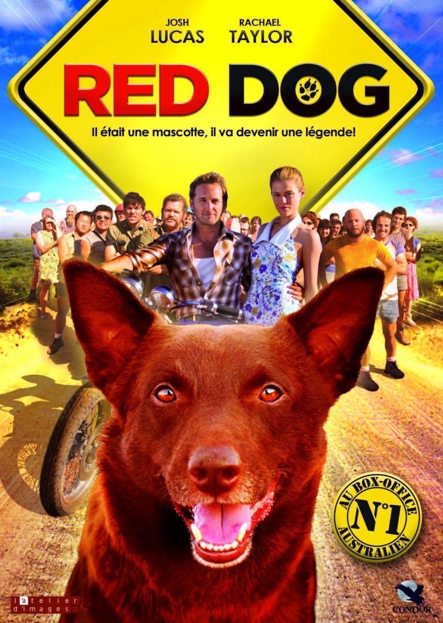 Red Dog: True Blue Official Teaser Trailer 1 (2016 ...