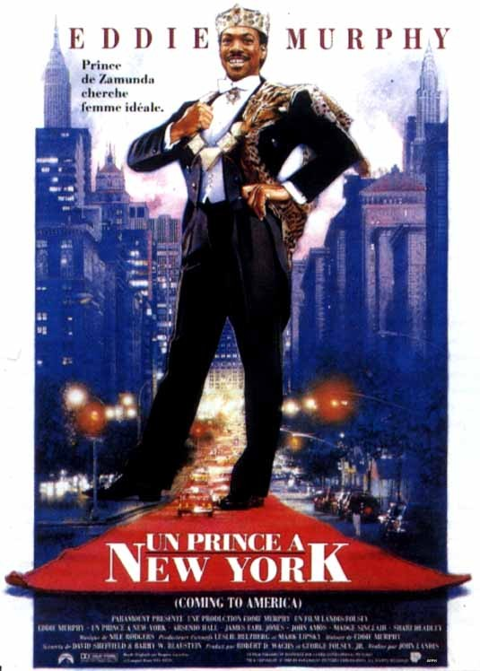 Un prince a New York [TRUEFRENCH][DVDRIP] [MULTI]