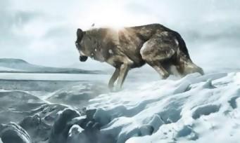 Un premier teaser pour Wolf Totem de Jean Jacques Annaud