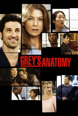 [MULTI] Grey's Anatomy saison 8 [FRENCH] [HDTV]