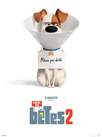 JEU CONCOURS COMME DES BÊTES 2 : des DVD et Blu-Ray à gagner