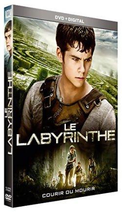 Le Labyrinthe - DVD