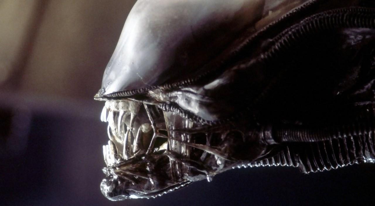 Alien : Ridley Scott annonce la meilleure nouvelle possible pour les fans