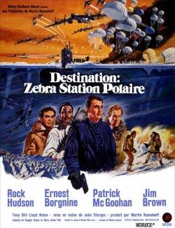 Destination zebra station polaire